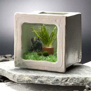 カミハタ 和風アクアリウム 陶器角水槽セット【おしゃれ おすすめ】 [CB99]