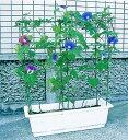 第一ビニール のびーる支柱 花のアーケード[プランター用] 【ガーデニング 用品 ガーデニング用品 プランター 菜園 園…