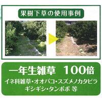 大成農材除草剤サンフーロン20LSANF-20000【2本セット】