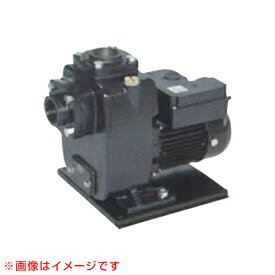 三相電機 自吸式ヒューガルポンプ 60Hz 40PSZ-7523B 【三相電機 自吸式 ポンプ 鋳物 樹脂製 海水用】【おしゃれ おすすめ】[CB99]
