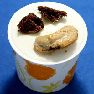カップアイス アイスクリーム ジェラート マミークッキー&ビスコッティークリーム  クッキーバニラのやさしい味 時折りチョコチップの風味と歯ざわり 魁ジェラートアイスクリーム