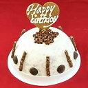 チョコチップアイスケーキ お誕生日 バースデイ お誕生日ギフト お誕生会 ホームパーティー プレゼント カード付き アイスクリーム 魁ジェラート