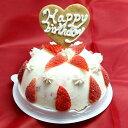 パンナストロベリーアイスケーキ 4号サイズ アイスケーキ たっぷりの苺と生クリーム アイス ケーキ 誕生日 バースデイ 誕生会 ホームパーティー プレゼント カード付き 少人数 アイスクリーム 魁ジェラート