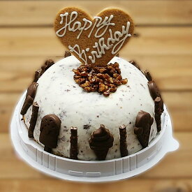 チョコチップ アイスケーキ お誕生日 バースデイ お誕生日ギフト お誕生会 ホームパーティー プレゼント カード付き アイスクリーム チョコレート 魁ジェラート ケーキアイス ケーキ アイス ギフト アイスクリームケーキ