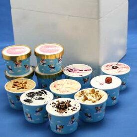 アイスクリームカップ12個入り 12種類の味 贈答品 お中元 お歳暮 プレゼント ギフト カップアイスセット 詰め合わせ 返礼 アイスクリーム ジェラート