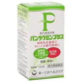 【あわせ買い2999円以上で送料無料】【第3類医薬品】パンラクミンプラス 120錠