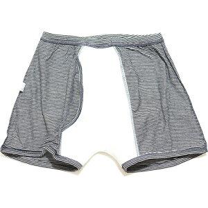おしゃれなボーダー柄の失禁パンツ【紳士100cc】 日本製 男性用失禁パンツ【Wディスメルで強力消臭パンツ】【33019】