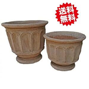 フィリー (ショコラ) お買い得2点セット オリーブやブルーベリーにも最適です。 陶器鉢 北海道・沖縄・離島出荷不可