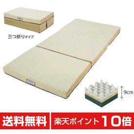 muatsu BASIC 敷きふとん ハード Sp-2 Dサイズ