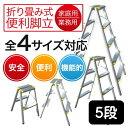 アルミ脚立 AM-5 5段 折りたたみ式脚立 軽量 アルミ製 はしご 作業台 ホームステップ 大掃除 脚立 きゃた…