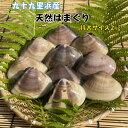 【日時指定可】 天然 特大 2kg(16~22個) はまぐり 【御中元】 漁師直送 九十九里産 千葉県産 国産 ハマグリ 蛤 バー…