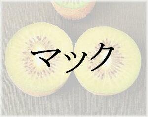 キウイフルーツ マック(黄肉系専用雄木) 接木苗 1本(入荷予定:2021年11月頃)
