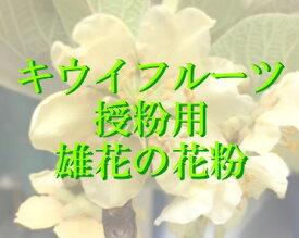 人工授粉用キウイ 花粉 1袋