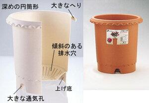 バラ鉢 10号 ブラウン 2鉢