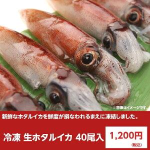 冷凍 生ホタルイカ お刺身用 40尾入り 蛍烏賊 ほたるいか さしみ