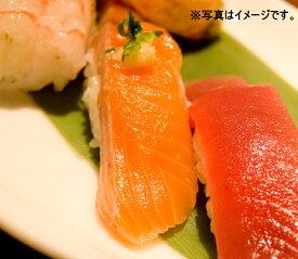 サーモンスライス 8g×20枚入 鮨 すし ネタ 鮭 サケ さーもん トラウト どんぶり 丼 海鮮 安 手巻き ちらし寿司