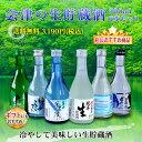 日本酒 飲み比べセット 会津の生貯蔵酒飲み比べ6本セット 300ml×6本