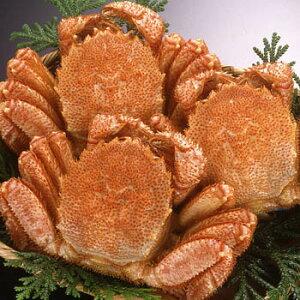 【在庫あります】北海道産 毛蟹350g前後ボイル急速冷凍