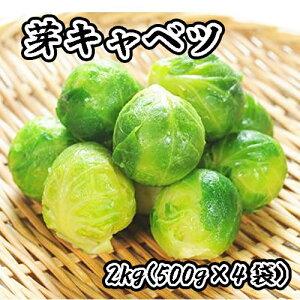 芽キャベツ 冷凍 野菜 2kg (500g×4袋) 料理店でも使われる業務用 キャベツ