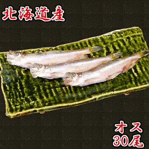 \本物のししゃも/ 北海道産 ししゃも オス 30尾 特大 柳葉魚 本ししゃも 送料無料 ギフト 北海道 海産物 お取り寄せ お取り寄せグルメ クール便
