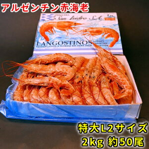 アルゼンチン 赤エビ 2kg 約50尾 海老 天然 蝦 有頭 L2サイズ 海産物 生食 お取り寄せ 海鮮 貰って嬉しい 贈答 贈物 海鮮小樽 ご飯 ギフト お酒 ビール クール便 送料別