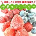[冷凍フルーツ]MIXスリーベリー[イチゴ・ブルーベリー・ラズベリー]500g20個まで1配送でお届けクール便[冷凍]にて…