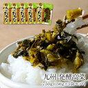 九州 発酵高菜 750g(150g×5袋セット)8セットまで1配送でお届け[メール便]【5〜8営業日以内に出荷】【送料無料】