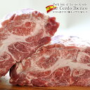 スペイン産 イベリコ豚 ネックサイド肩ロース ブロック約800g以上[賞味期限:未開封冷凍で1ヶ月以上]クール[冷凍]便でお届け【2〜3営業日以内に出荷】