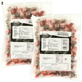 冷凍 ミックスベリー1kg[500g×2P]セット[冷凍][賞味期限:お届け後2ヶ月以上]10セットまで1配送でお届け【1〜2営業日以内に出荷】