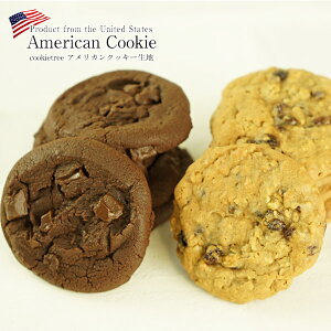 [outlet]cookietree アメリカンクッキー生地 28枚入り[ダブルファッジ・レーズンオートミール]選り取り[賞味期限:2020年12月26日][冷凍]【2〜3営業日以内に出荷】