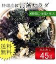 海藻サラダ(乾燥タイプ)1000円ポッキリ 送料無料 ぽっきり 無添加食品 ダイエット 低カロリー 自然食品 ミネラル 海藻サラダ