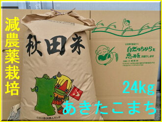Safe and delicious akitakomachi 30 kg 30 kg × 1 bag