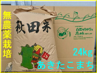 Safe and delicious akitakomachi 30 kg 30 kg × 1 bag 10P13oct13_b