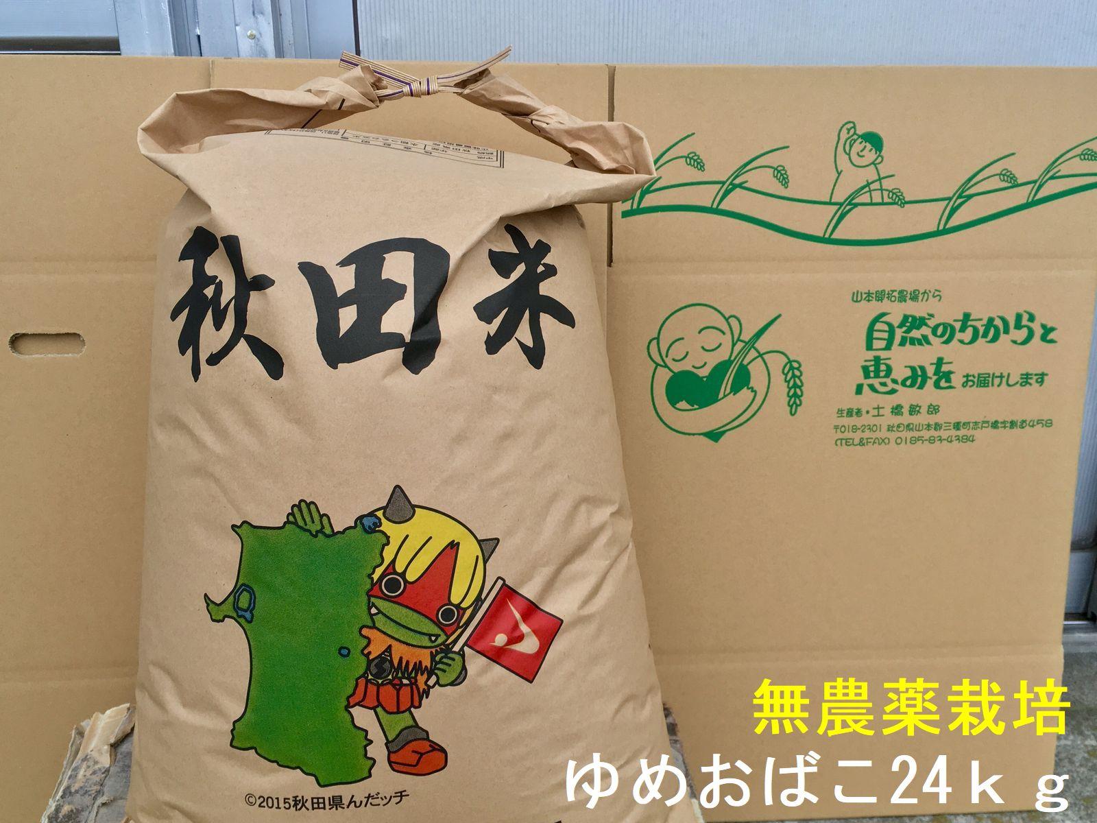 【新米】【送料無料】【無農薬 玄米】【無洗米対応】【30年秋田県産】淡麗もちもちゆめおばこ24kg×1袋