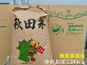 【新米】【送料無料】【無農薬 玄米】【無洗米対応】【令和2年秋田県産】淡麗もちもちゆめおばこ24kg×1袋