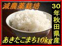29genkomati10