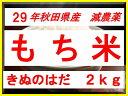 29motigen2