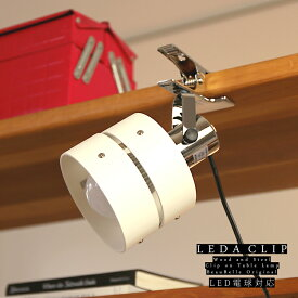 照明 スポットライト 1灯 レダ クリップ【ライト フロアスタンドライト フロアライト 間接照明 照明器具 電気スタンド ライトスタンド 照明スタンド おしゃれ 一人暮らし 和風 和室 北欧 かわいい 卓上 クランプ ダクトレール 寝室】