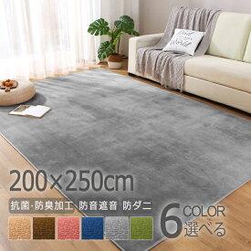 ラグ カーペット 200×250 3畳 ラグマット 洗える 新生活 オールシーズン おしゃれ 北欧 絨毯 じゅうたん