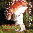 【中古】Fungus Amongus/Incubus