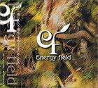 【中古】Energy field・ファーストアルバム