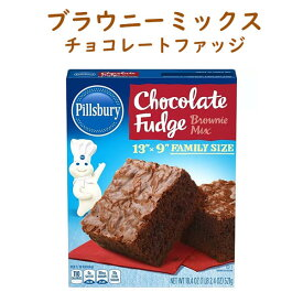 ファッジ ハーゲンダッツ チョコレート