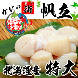 超 特大ほたて貝柱  数量限定  たっぷり1kg 北海道オホーツク枝幸産 刺身も料理も最高 送料無料