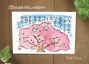 カラーカード63(桜)【季節/卒業/入学】