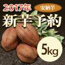 安納芋 5kg【等級/A品】鹿児島県産 蜜芋 さつまいも 産地直送 送料無料 紅はるかもあります。