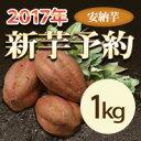 新芋 安納芋 1kg  【等級/A品】  鹿児島県産 蜜芋 安納芋 さつまいも 産地直送 送料無料 紅はるかもあります。(安納いも あ…