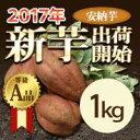 訳なし 有機肥料 新芋 安納芋1kg 【等級/A品】鹿児島県産 蜜芋 安納芋 さつまいも 産地直送 送料無料 紅はるかもあります。(安納いも あんのういも)