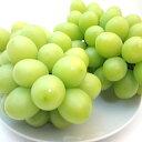 【送料無料】長野県産 種無しブドウ シャインマスカット 3房入り マスカットを超えた葡萄の新品種! 皮のついたまま…