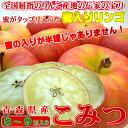 青森県産 幻の蜜入りリンゴ こみつ 8〜9玉入り 高徳を究極の品質に高めた蜜入り りんご 甘くて旨みのある味!緻密な…