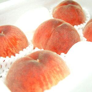 【送料無料】 山梨県産 桃 5玉入り センサーで糖度を測定し最も高い基準をクリアしたプレミアムピーチ、大糖領! 日川白鳳、白鳳、加納岩白桃、浅間白桃、なつっこ、一宮白桃、川中島